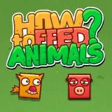 How To Feed Animals